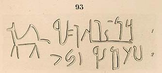 lepsius camel