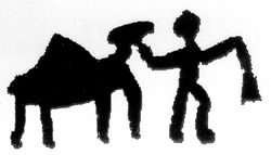 camel sinai